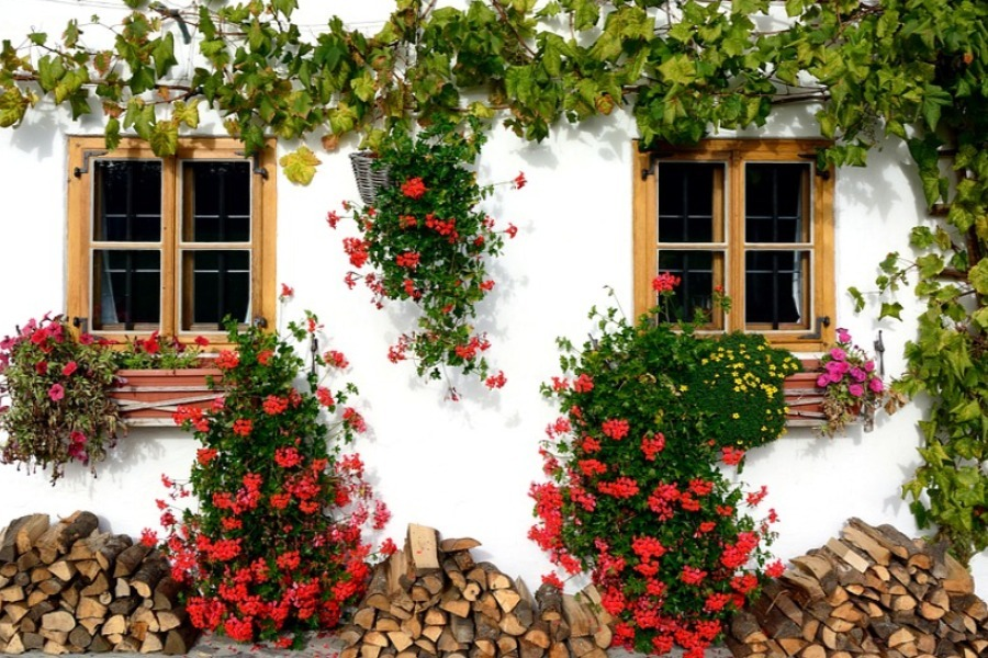 ideas para decorar jardines rusticos